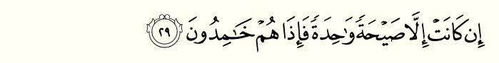 Surah yaseen ayat 29