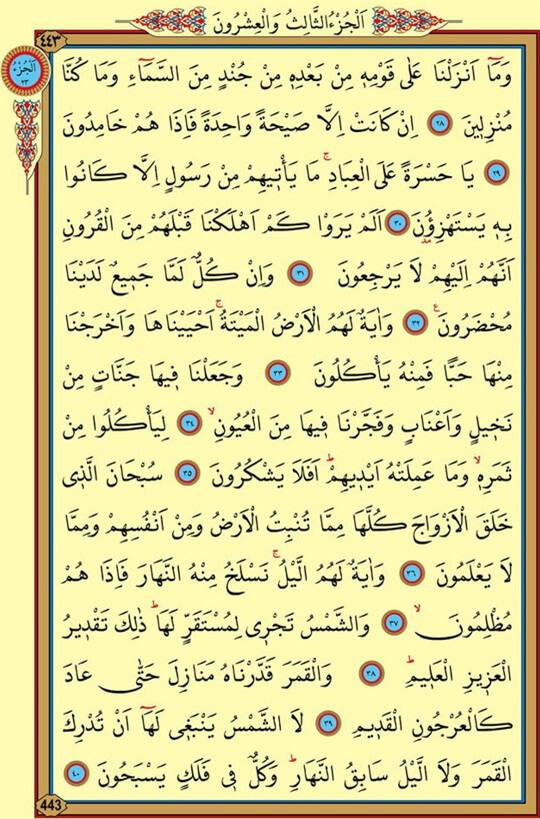 Bacaan Surat Yasin Tanpa Terjemahan Hanya Arab